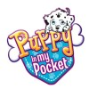 Щенок в моем кармане (Puppy in my pocket)