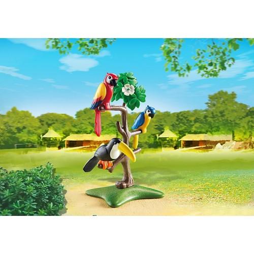 Зоопарк: Тропические птицы Playmobil (Плеймобил)