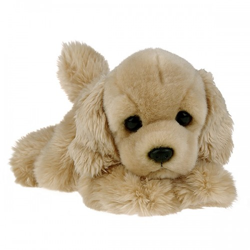 Бордер Кокер-спаниель щенок 22 см